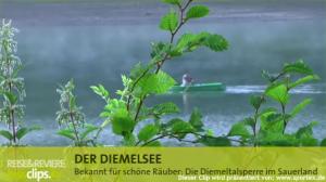 Bekannt für schöne Räuber: Die Diemeltalsperre im Sauerland