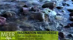 Mefo-Tour an der Ostsee
