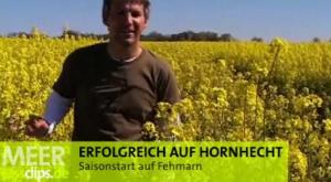 Horni-Saisonstart auf Fehmarn!