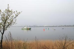 Auch vom Boot ging's den Silberlingen an die Schuppen.