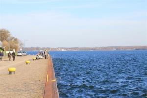 Heringsangeln in Kiel am Tiessenkai