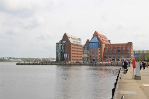 Heringsangeln in Rostock am Stadthafen