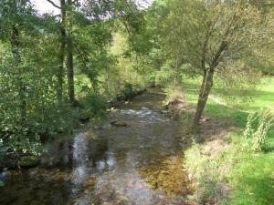 Elz (Oberprechtal)