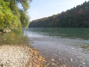 Rhein (Hohentengen)