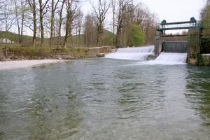 Hier steht immer Fisch: das Wehr südlich des Ortskerns Siegsdorf