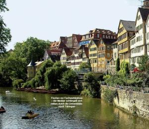 Der Neckar in Tübingen - Fachwerk und Forellen (12/2006)