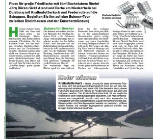 Rhein: Fantastisch zum Feedern (10/2007)