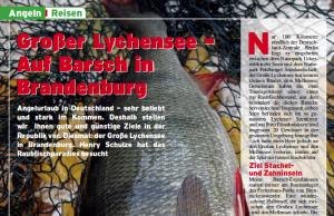 Großer Lychensee - Auf Barsch in Brandenburg (2/2008)