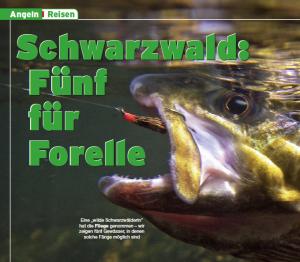 Schwarzwald: Fünf für Forelle (3/2008)