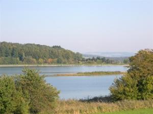Neuweiher (Andelshofer Weiher)