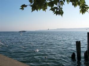 Bodensee (Überlinger See)