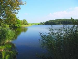 Wuhrmühleweiher
