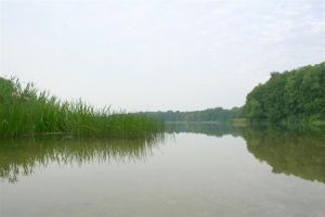 Dutzower See