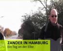 Ein Tag an der Elbe