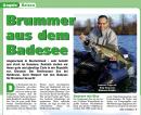 Brummer aus dem Badesee (9/2007)