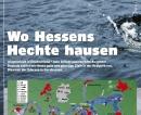 Wo Hessens Hechte hausen (6/2006)