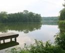 Borgsee